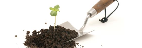 Constant Gardener Trowel