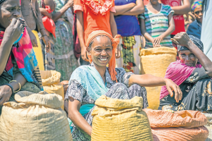Ethiopian woman selling crops in a crowded market in Jimma before the current food shortages | photo: iStock